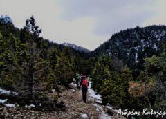 Από τη Μονή Μαλεβής στο δάσος δενδρόκεδρων του Πάρνωνα